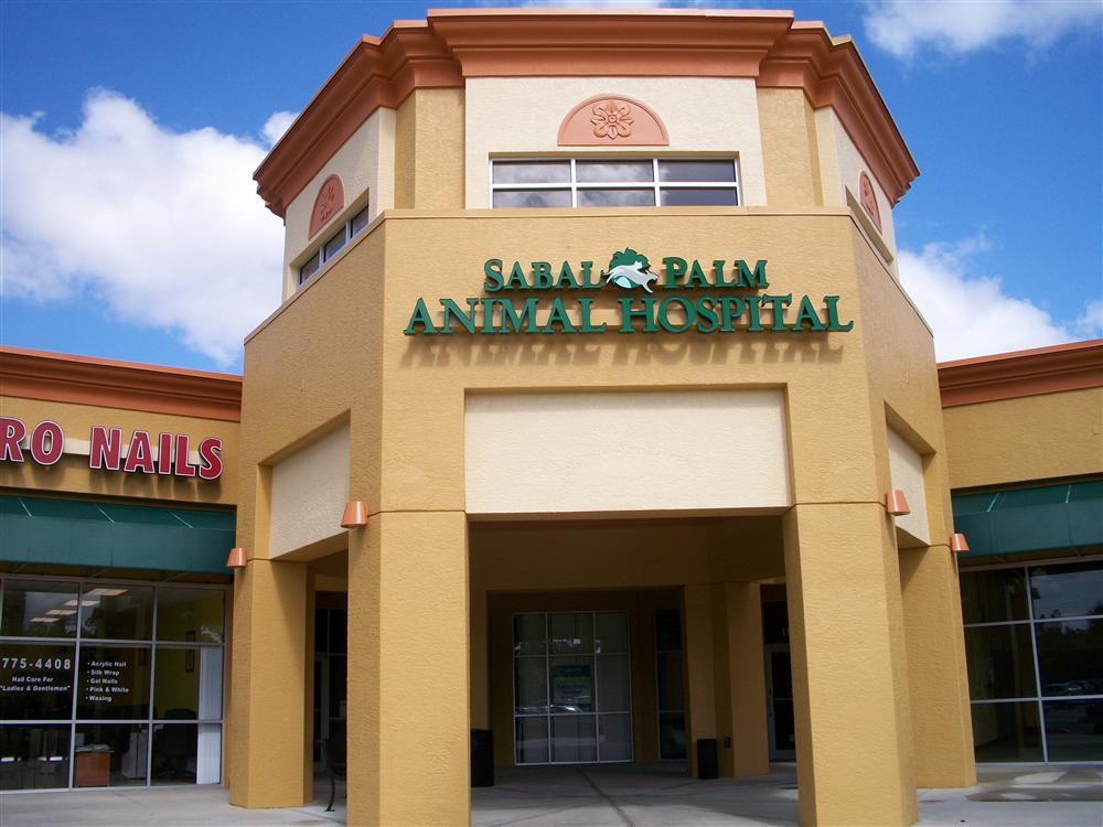 Sabal Palm Animal Hospital, Naples, FL by Lee Designs
